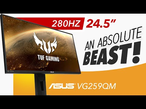 ASUS TUF VG259QM - An ABSOLUTE MONSTER - Detailed Review